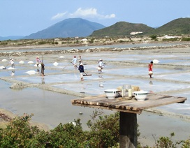 Dự án Căn cứ dịch vụ dầu khí Vân Phong bị chấm dứt đầu tư