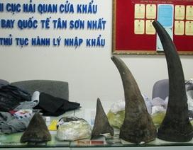 Giấu 13kg sừng tê giá 15 tỷ đồng trong hành lý bay đưa vào VN