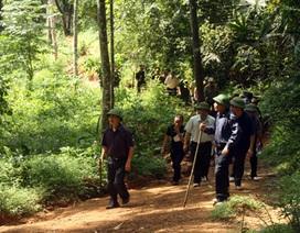 Vụ tàn sát rừng già: Sự thật không thể chối cãi!
