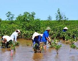Úc hỗ trợ đánh giá mô hình thích ứng biến đổi khí hậu ở Việt Nam