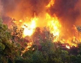Chủ động phòng tránh cháy rừng trong mùa khô hạn