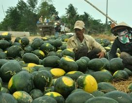 Cần thay đổi tư duy cũ trong đầu tư vào nông nghiệp