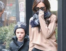 Gia đình Beckham sành điệu đi ăn trưa