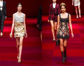 Bộ sưu tập sang trọng của Dolce & Gabbana