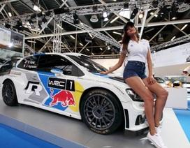 Dàn mẫu xinh đẹp tại Bologna Motor Show 2014