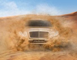Bentley sẽ làm xe giống kiểu X6?