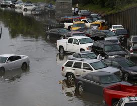 Người mua ô tô cũ cần thận trọng với xe bị ngập tại Mỹ