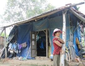 Cấp đất, làm nhà cho gia đình tá túc trong đền Văn Thánh