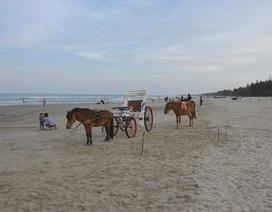 Lãnh đạo 14 Bộ, 28 tỉnh thành dự tuần lễ Biển và Hải đảo tại Quảng Ngãi