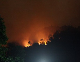 500 người dập tắt vụ cháy rừng trên đèo