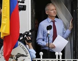 Ông chủ WikiLeaks muốn tị nạn tại sứ quán Ecuador một năm