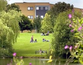 Phỏng vấn học bổng 50% Đại học Leicester & Đại học Royal Holloway, London