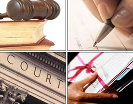 Kỳ 3: Luật sư – Nghề được xã hội trọng vọng