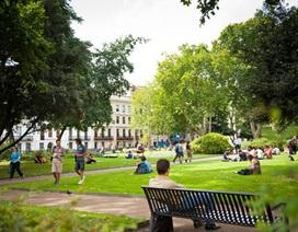 Tập đoàn Giáo dục Cambridge - cơ hội học tập tại Anh, Mỹ