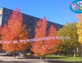 Hội thảo du học Thụy Sĩ, trường Vatel danh giá