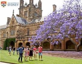 Đại học Sydney- TOP các trường đại học trên thế giới
