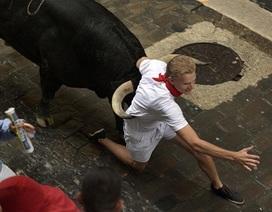 """""""Lạnh gáy"""" với cảnh chạy đua cùng bò tót ở Tây Ban Nha"""