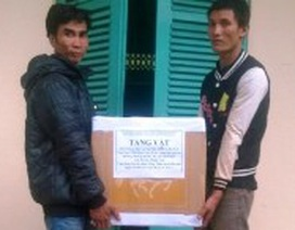 Bắt 2 người Lào vận chuyển 1000 quả pháo lậu qua biên giới