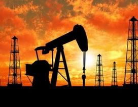 """Giá dầu giảm 1 USD, ngân sách nhà nước """"hụt"""" thu 1.000 tỷ đồng"""