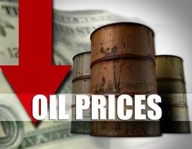 Thủ tướng: Áp kịch bản giá dầu 40 USD/thùng để điều hành vĩ mô