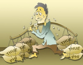 """Người Việt """"gánh"""" tỷ lệ thuế phí/GDP cao gấp từ 1,4 đến 3 lần khu vực"""