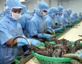 Brasil bỏ lệnh đình chỉ nhập khẩu thủy sản Việt Nam