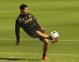 """""""Hạ mình"""" xin lỗi, Suarez được phép tập luyện cùng Liverpool"""