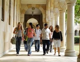 Hội thảo: Đại học Queensland - Học bổng và việc làm trên toàn cầu