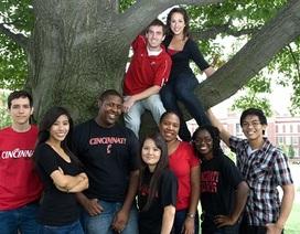 Học bổng Toàn phần Đại Học Cincinnati, Mỹ