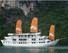 Paradise Cruises: Chất lượng là sức mạnh phát triển