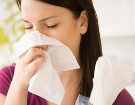 Khổ với các triệu chứng của viêm mũi dị ứng, viêm xoang