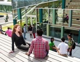 Du học Canada: Bậc học nào cho bạn, Cao đẳng hay Đại học?