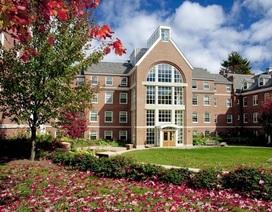 Con đường vào các trường đại học hàng đầu tại Mỹ
