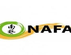 Cơ hội học bổng 100% học phí tại Học viện nghệ thuật Nanyang, Singapore