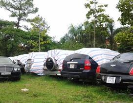 Tăng cường xử lý ô tô mang biển ngoại giao hết hạn
