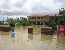 Việt Nam cùng các nước APEC ứng phó với lũ lụt bất thường
