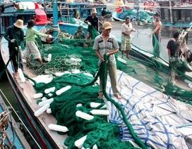 Quảng Nam thành lập Quỹ hỗ trợ ngư dân