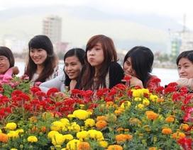 Hàng vạn người thưởng lãm con đường hoa xuân