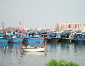 Hướng dẫn gần 35.000 tàu cá tìm nơi tránh bão số 6