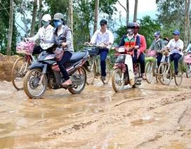 Quảng Nam: 100% học sinh đi học lại sau bão