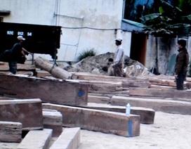 Cạy container tráo gỗ quý bằng cát để xuất khẩu