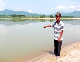 Hai cha con cứu 8 học sinh đuối nước