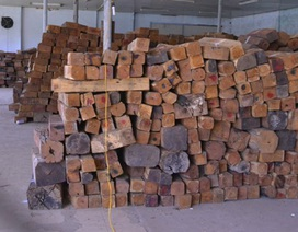 Bắt giữ lô gỗ hương 4 tỉ đồng chở lậu bằng tàu hỏa