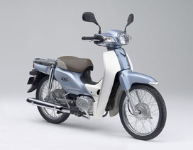 Honda báo lỗi 22.000 xe Super Cub ở Nhật Bản