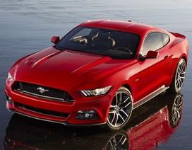 Dành cho người hâm mộ ngựa hoang Ford Mustang