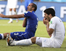Suarez tái ngộ Evra, Chiellini ở trận chung kết Champions League