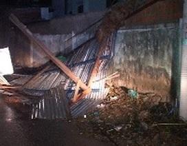 Hình ảnh tan hoang sau trận lốc xoáy, hơn 100 nhà dân bị tốc mái, hư hỏng