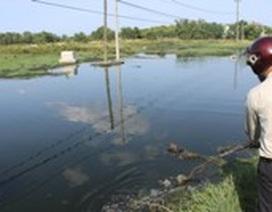 Dân kêu trời vì nhà máy chế biến bột cá xả thải ô nhiễm