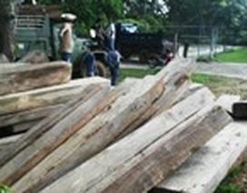 Quảng Trị: Phát hiện một bãi tập kết chứa hàng chục m3 gỗ lậu