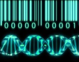 Lần đầu tiên Việt Nam xây dựng thành công hệ gen một người Việt